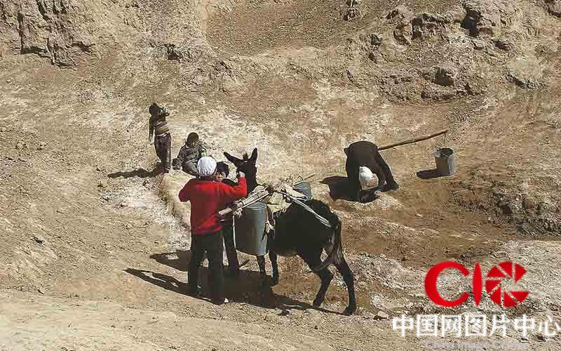 过去很多年,张志民一家只能靠吃窖水、苦咸水度日。大旱年间村民们每天就这样骑个骡子四处寻水吃。