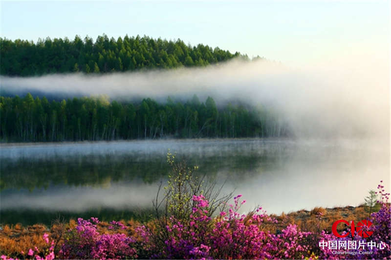 /enpproperty--> 春看红柳杜鹃,夏观湖泊火山,秋赏花山彩叶,冬览雾凇雪原。神奇壮美的达尔滨湖国家森林公园,美景如画,俯拾即诗。魅力达尔滨,奇美毕拉河,正张开双臂热忱欢迎四海宾朋纵情追寻放飞心灵的旅游梦想。 达尔滨湖国家森林公园 国家4A级景区,位于内蒙古呼伦贝尔鄂伦春自治旗诺敏镇。神山、圣水、花海、奇峡是对公园景区风光的高度概括。这里有以四方山为代表的中国最北火山群,有达尔滨湖、达尔滨罗姊妹湖为代表的人间仙境,有呼伦贝尔最美的市花兴安杜鹃花海,有兴安第一峡之称的神指峡