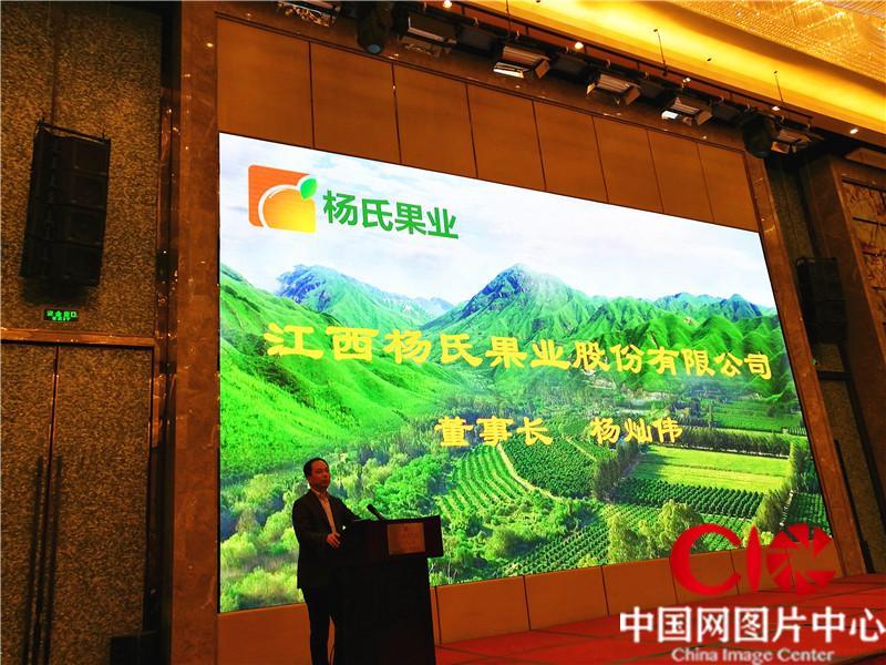 2017大陆柑桔产业链链年会在柳州召开
